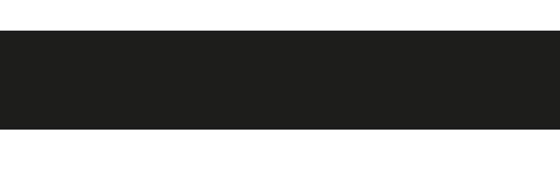 Die Multivision